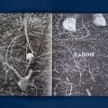 caddie-volume-two-product-shots-4